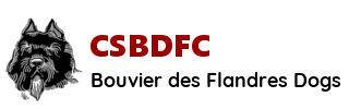 CSBDFC